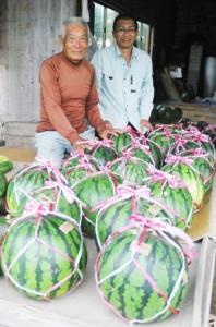 大玉スイカがずらりと並ぶ西田農園=16日、奄美市笠利町和野