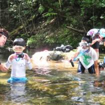 夏休み自然観察会ヨコ140728奄美市住用町の役勝川