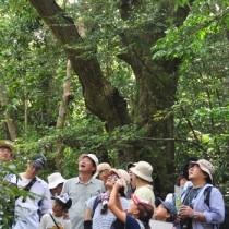 生物多様性保全の大切さも学んだ「奄美の自然じっくり体験会」=19日、龍郷町の奄美自然観察の森