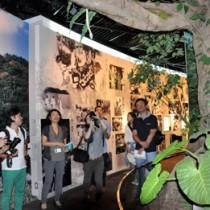 奄美の森をイメージした奄美パークの展示物を取材する参加者=28日、奄美市笠利町
