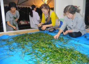 地域住民が「ヒヨヒヨ」と唱えながら投げ入れたソテツ葉を束ねる女性たち=30日午前5時50分、瀬戸内町の清水集落