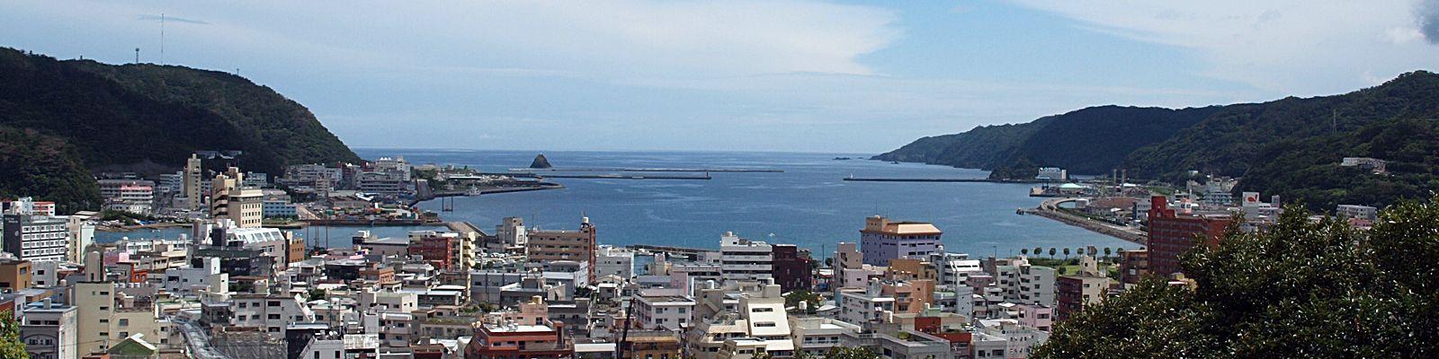 おがみ山から見渡す奄美市名瀬の市街地