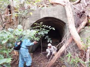 初確認の格納壕を調査するメンバー=8日、瀬戸内町三浦(町立図書館・郷土館提供)