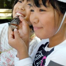 石川県から飛来したアサギマダラに笑顔の児童たち=同