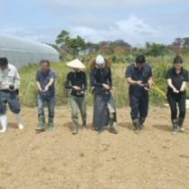 渋谷さんのほ場で行われたソバの種まき=9日、奄美市笠利町