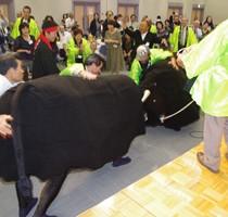 盛り上がった「模擬闘牛」大会=9月28日、品川区立総合区民会館