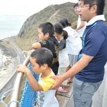 灯台最上部から喜界島などの眺めを楽しむ参加者
