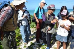 浜辺の植物などを学んだ自然観察会=23日、与論町のウドノス海岸