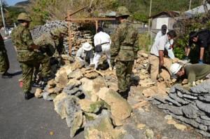 サンゴの石垣の修復作業に汗を流す参加者=10日、瀬戸内町西古見