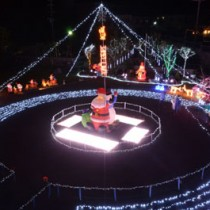 瀬戸内町古仁屋の寿老園。一歩踏み入れると、そこはまるで光の遊園地。