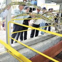 搬入出発式でサトウキビを投入口に投げ入れる関係者=16日、南栄糖業