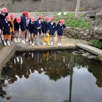 学校近くの湧き水を見学する児童ら=8日、知名町屋者