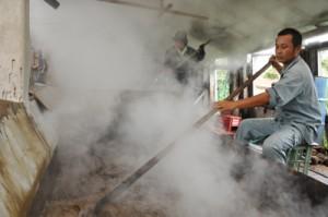 新黒糖の製造が始まり、湯気の漂う徳南製糖の工場内=8日、伊仙町犬田布