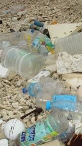 奄美大島の海岸に漂着している外国製のペットボトル=7日、奄美市