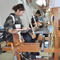 気持ちも新たに織りの技術を磨く研修生ら=15日、奄美市名瀬の紬会館