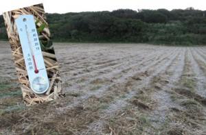 喜界町のサトウキビ畑で発生が確認された霜と、気温零度を示している寒暖計(伊地知告さん提供)