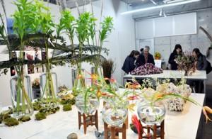 奄美の草花や素材を使った作品が並ぶ会場=18日、東京南青山