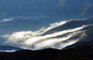 放射冷却現象で雲海が出現した奄美大島の山間部=11日朝、湯湾岳山頂から