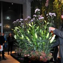 奄美産の花を使った作品を披露するバーグマンさん=17日、東京南青山