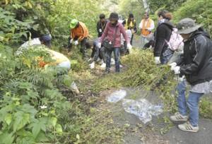 要注意外来生物のアメリカハマグルマの駆除作業を行う参加者=14日、徳之島町