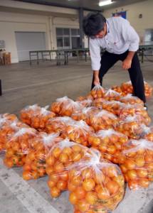 大玉の不足が全体的な高値推移を招いている奄美産タンカン=12日、奄美市名瀬