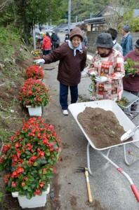 集落内に花のプランターを設置する老人クラブ会員ら=10日、瀬戸内町網野子集落内に花のプランターを設置する老人クラブ会員ら=10日、瀬戸内町網野子