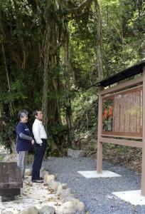 ガジュマル大木横に設置されたケンムン伝説の案内板=30日、宇検村湯湾