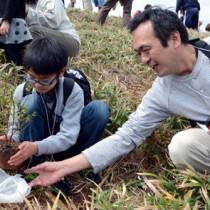 ウオーキングで汗を流した後、タイワンヤマツツジの苗木を植樹する参加者=8日、大和村の宮古崎