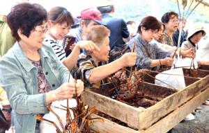 旬のイセエビを買い求める来場者=26日、奄美市名瀬の大熊漁港