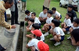 初の土曜授業で地域住民と共に、シイタケのこま打ち体験を行った児童=11日、知根小学校