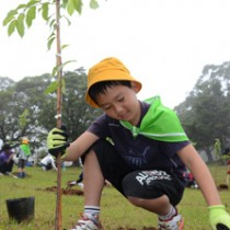 苗木の成長を願って植える大山緑の少年団=29日、知名町