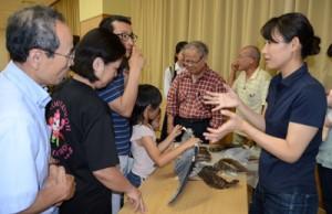 野鳥の標本を手に取りながら伊藤獣医師(右)の説明を聞く受講生ら=16日、奄美市