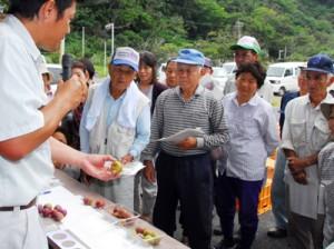 果実の着色など、収穫の目安を説明した目ぞろえ会=22日、大和村