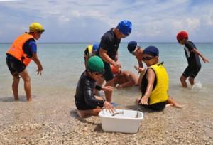体験留学生とクルマエビのつかみ取りを楽しむ知根小の児童ら=17日、奄美市名瀬の根瀬部