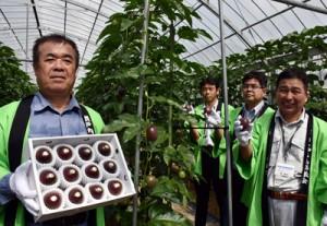 パッションフルーツの収穫を祝う生産者ら=11日、瀬戸内町嘉鉄