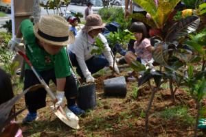 緑再生への願いを込め、苗を植える参加者=31日、与論町茶花のコースタルリゾート