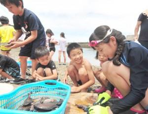 追い込み漁で取れた魚をさばく児童ら=14日、奄美市名瀬の有良海岸