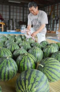 島内産のスイカがずらりと並ぶ露店=7日、奄美市笠利町和野