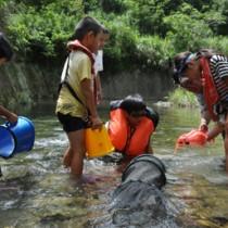 川の生き物を観察する児童ら=8日、天城町
