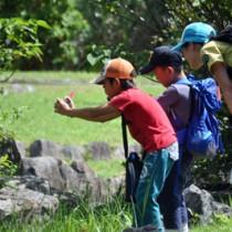 カメラを構えてベストショットを狙う参加者=27日、奄美野生生物保護センター
