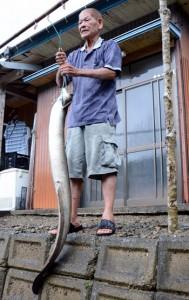 富山さんが河内川で捕らえた体長1・5㍍の大ウナギ=6日、宇検村石良