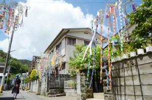 通りを彩る屋仁川自治会の七夕飾り=20日、奄美市名瀬柳町