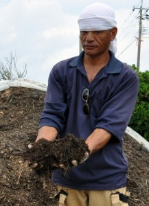 出来上がった堆肥を手に持つ担当職員=15日、和泊町