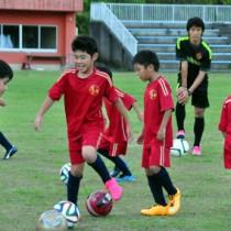 プロサッカー選手を目指し練習に励む子どもたち=10日、瀬戸内町の清水公園総合陸上競技場