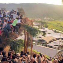 集落と田袋を見下ろす山の中腹で「ショチョガマ」を揺さぶる男衆=17日午前6時27分ごろ、龍郷町秋名