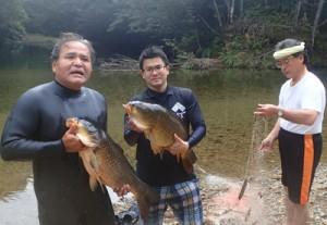 住用ダム上流の調査で捕獲された大型のコイ=11日、奄美市住用町
