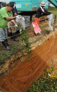 回収したグアバなどを廃棄する徳之島町の職員ら=14日、伊仙町