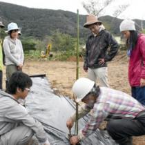 開墾した畑にスモモの苗木を植える参加者=29日、瀬戸内町清水