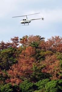 透明袋入りのテックス板のヘリコプターへの積み込み作業(●)と、空中散布のため山間部上空に飛来したヘリコプター=16日、奄美市笠利町
