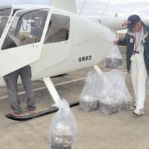 空中散布するテックス板のヘリコプターへの積み込み作業=27日、奄美市笠利町の奄美空港